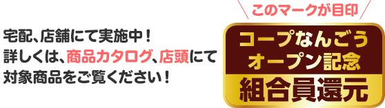 img_nangou_kangen_02.jpg